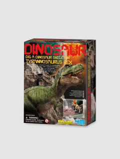 Juego interactivo esqueleto Dino