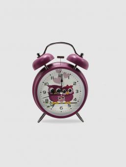 Reloj Camp Owl